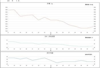 2013.5月グラフ.jpg